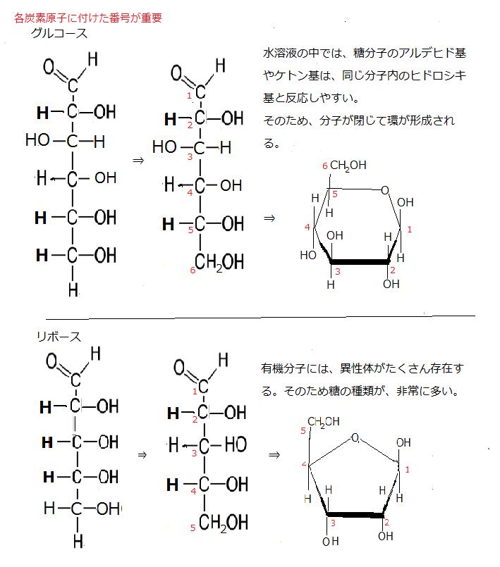 グルコース 構造 式